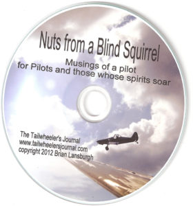 Nuts from a Blind Squirrel audio book CD